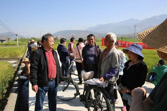 农学院教师助力凉山冕宁大麦产业发展