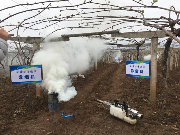 疫情下的农业生产(5)