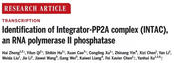复旦大学徐彦辉、陈飞团队合作报道新的转录调控复合物INTAC并揭示其结构和功能成果发表于《科学》主刊