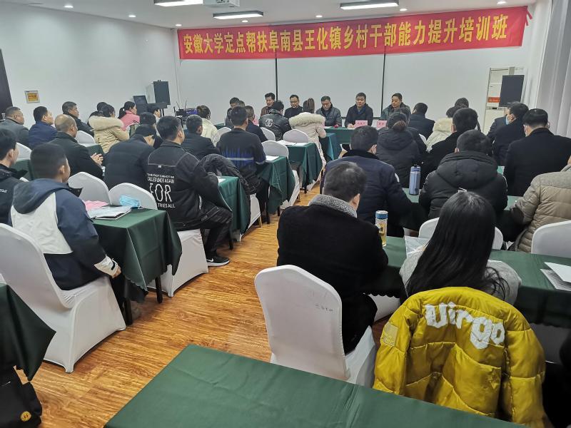 安徽大学定点帮扶阜南县王化镇乡村干部能力提升培训班开班