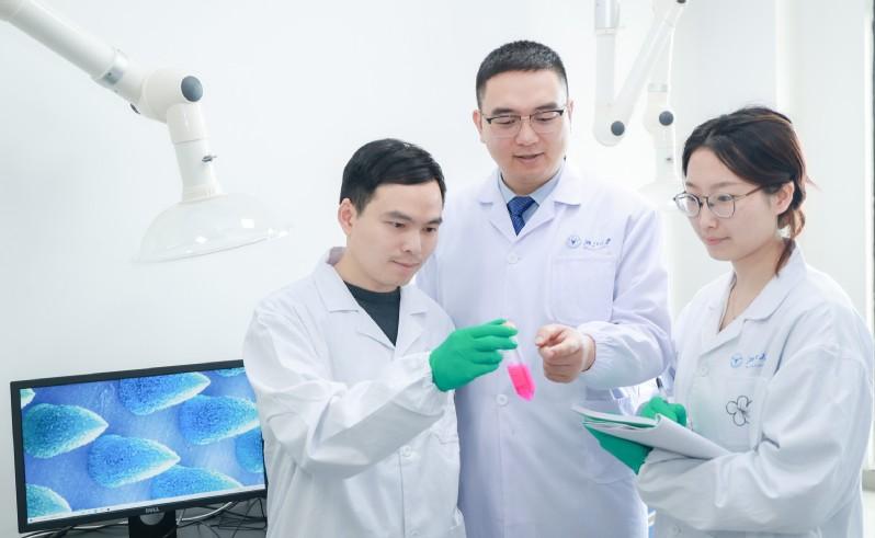 浙大学者研发抗癌贴片,可在瘤内催化产生抗癌药物