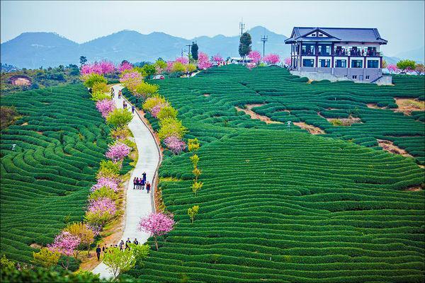 漳平台湾农民创业园