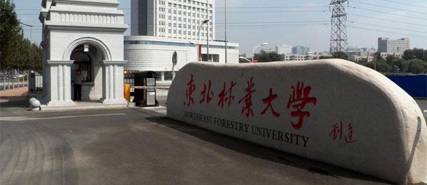 东北林业大学干部培训