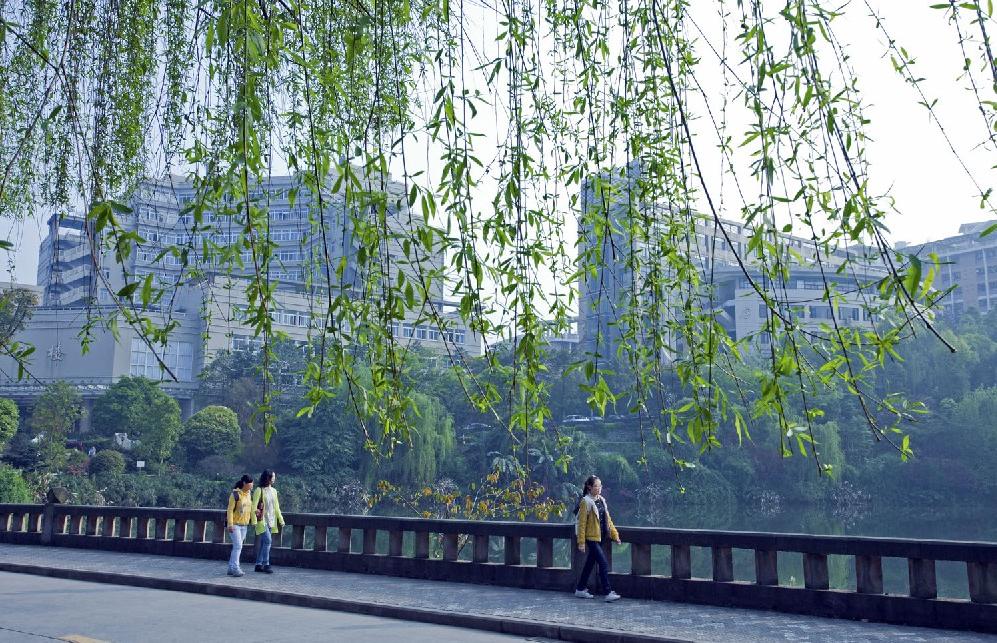 湖畔新绿-重庆工商大学干部培训