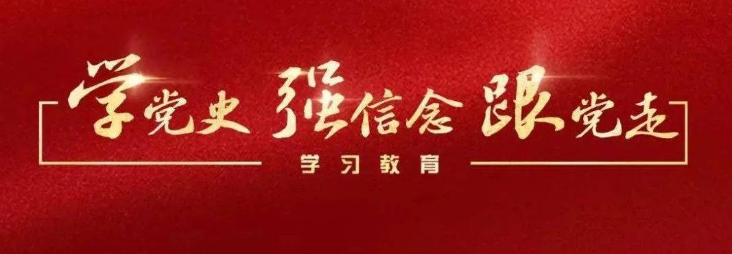 """区委统战部机关党总支部党员""""党史学习教育""""心得体会(七)"""