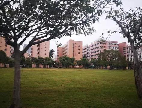 校园风光-广东干部培训