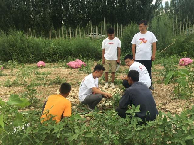 【石大学子走基层】农学院暑期三下乡实践队走进一师三团