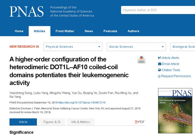 南开大学团队揭示引发急性白血病新分子机制 助力靶向药物研发