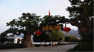 特色社会主义新农村--上王村半日