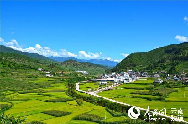 5万到2000万,云南这个山区合作社7年销售额增长400倍