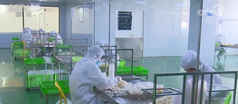 中西部28661个扶贫龙头企业复工率98% 吸纳贫困人口就业82.4万人