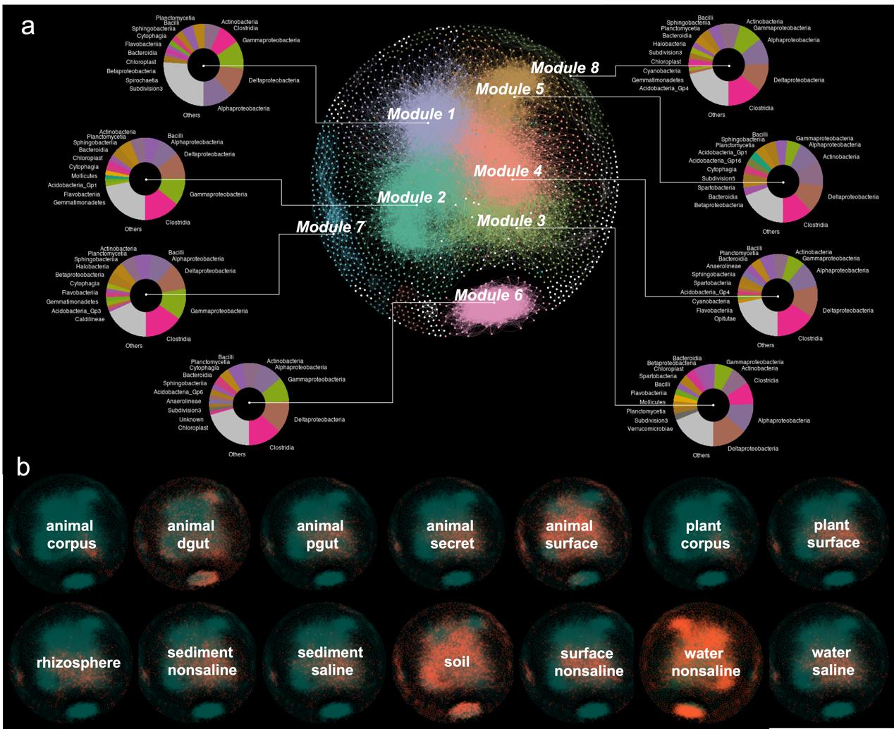 """首个地球微生物""""社会关系""""网络在浙大绘制"""