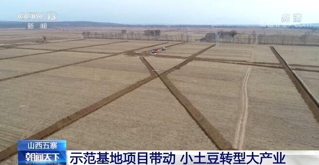 示范基地项目带动 山西五寨让小土豆撬动大市场做成大产业