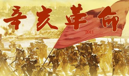 纪念辛亥革命110周年大会心得体会